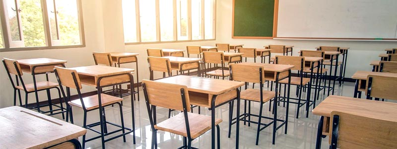 What are the causes and effects of mold in classrooms and schools
