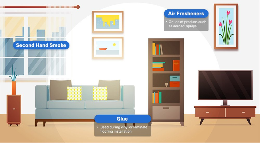 Sources of Formaldehyde in Homes - Living Room